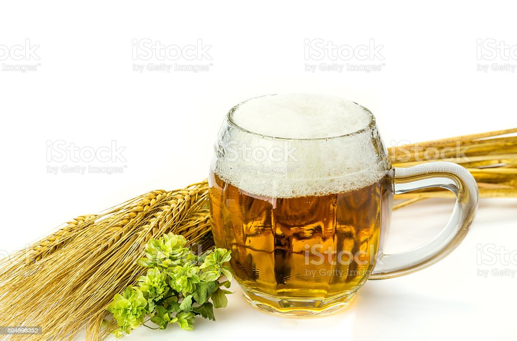Beer with ears of wheat and Green Hop royalty-free stock photo