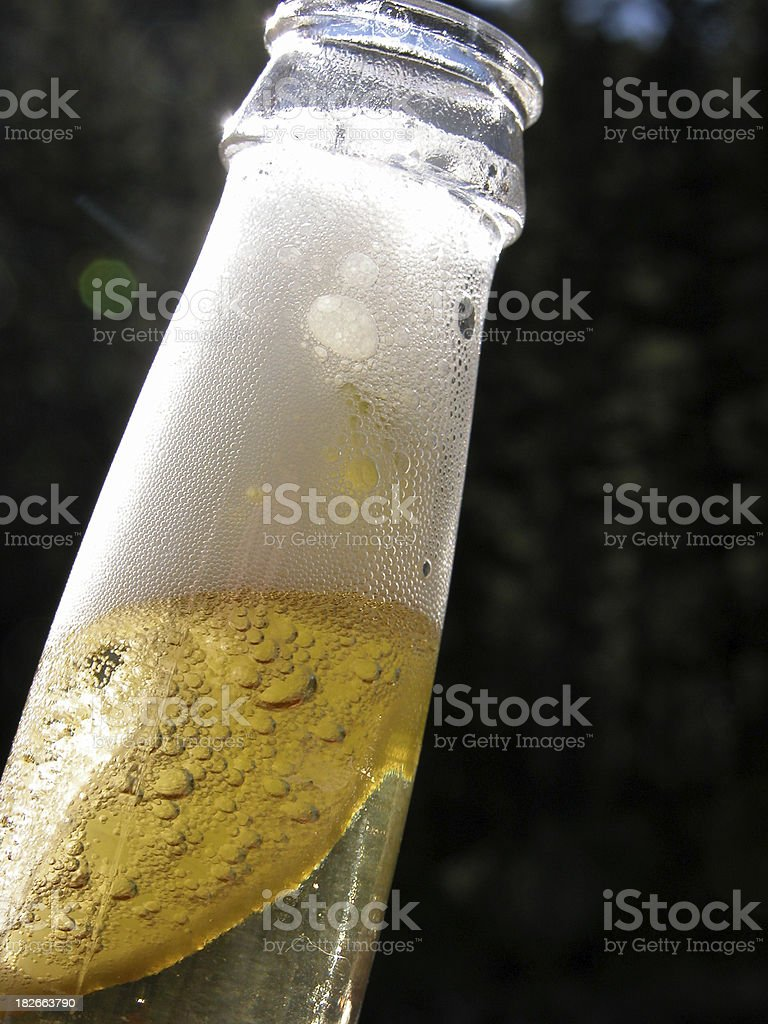 Beer with Lime stock photo