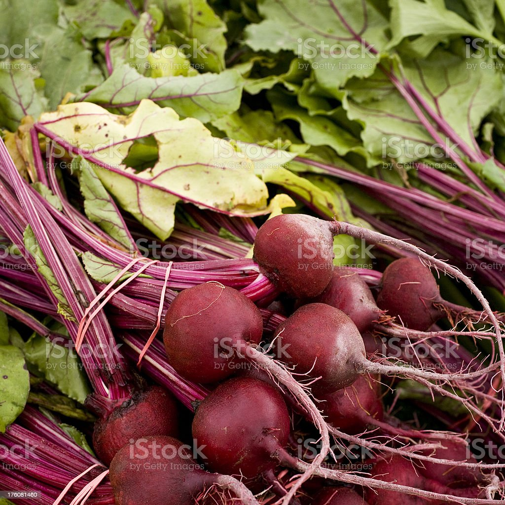 beet roots royalty-free stock photo