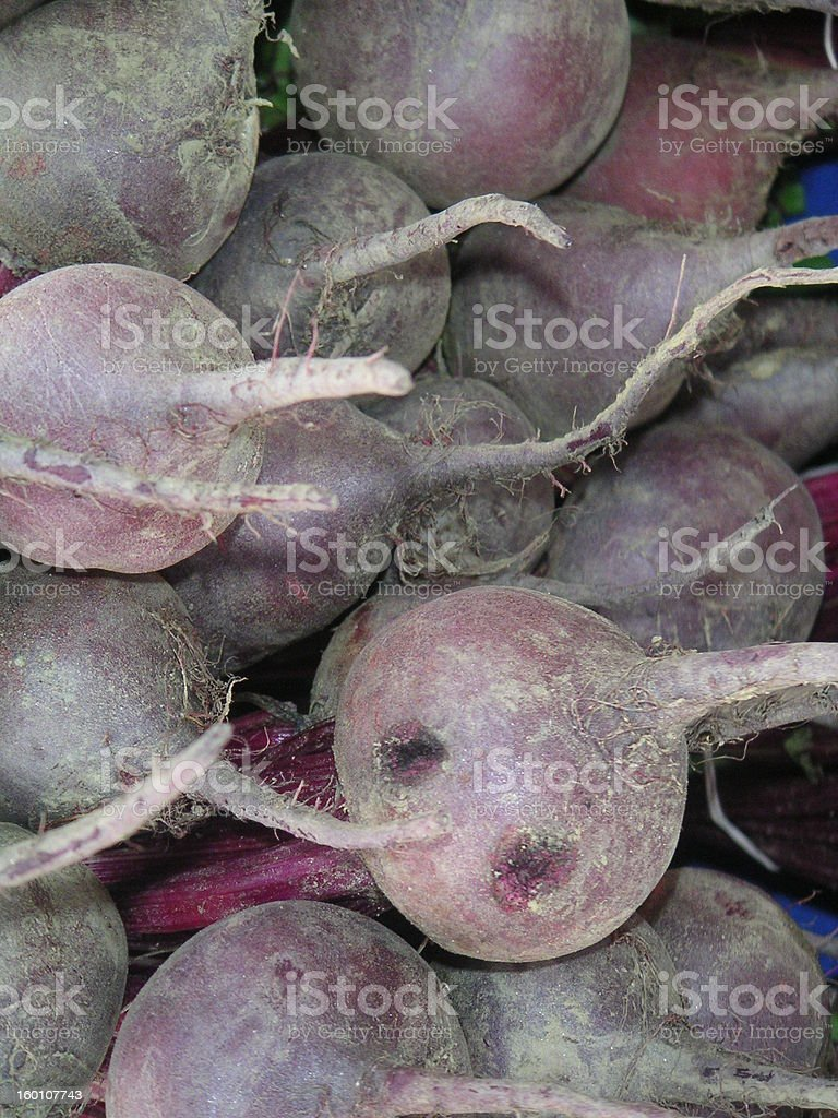 Beets 1 royalty-free stock photo