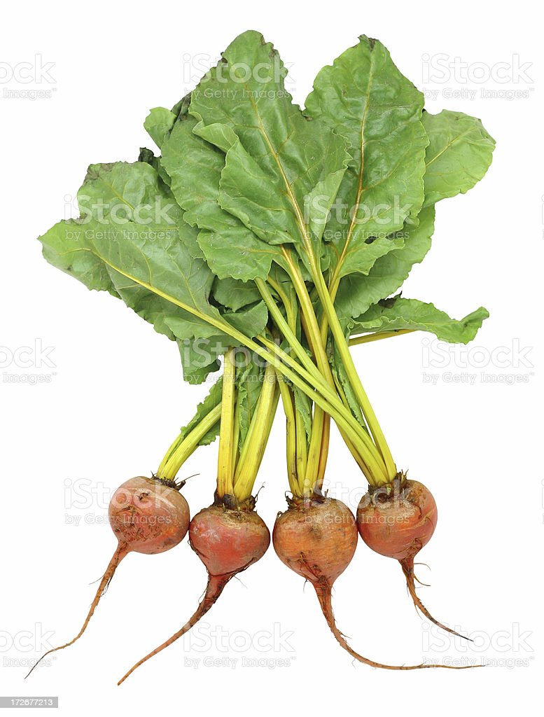 beets (golden) royalty-free stock photo