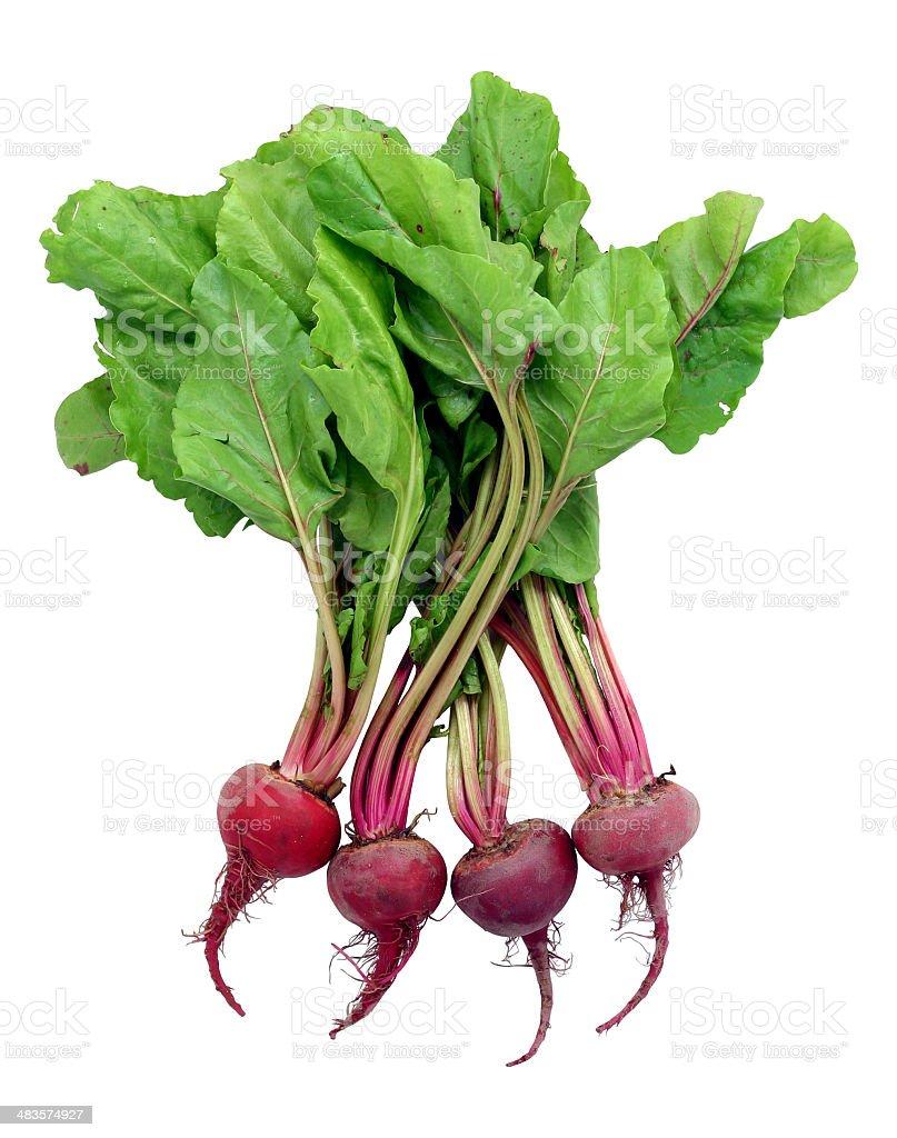 beets royalty-free stock photo