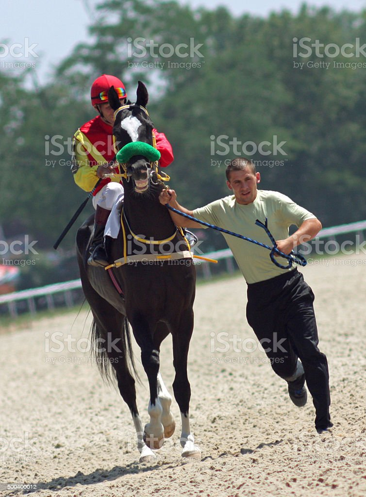 Before horse race. stock photo