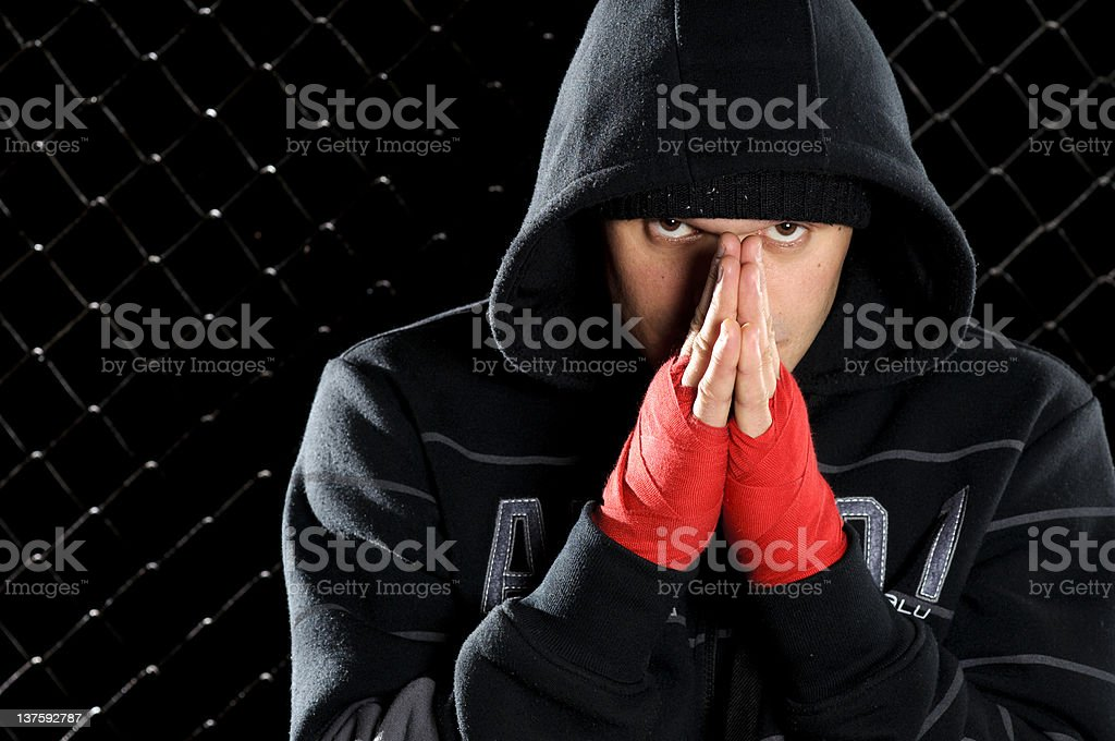 Before the fight royalty-free stock photo