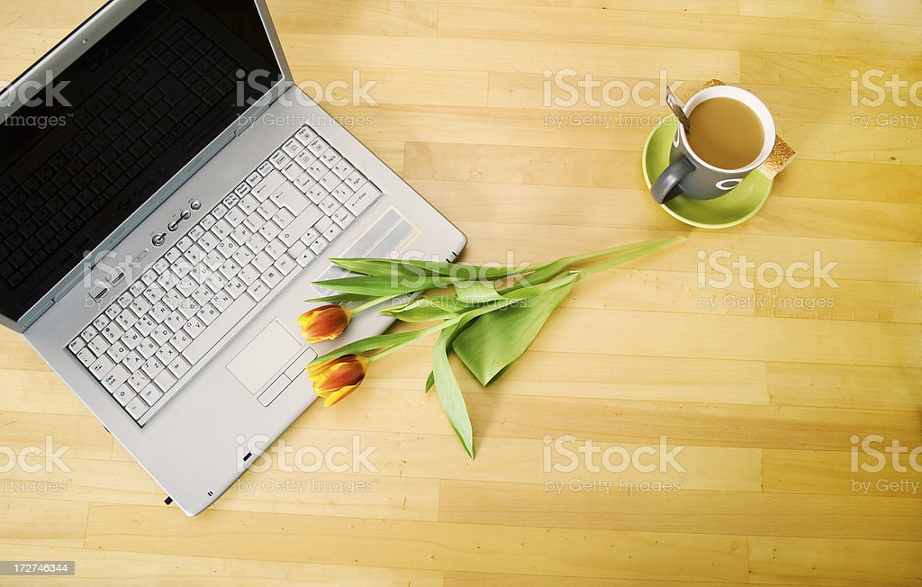Beggining the day royalty-free stock photo