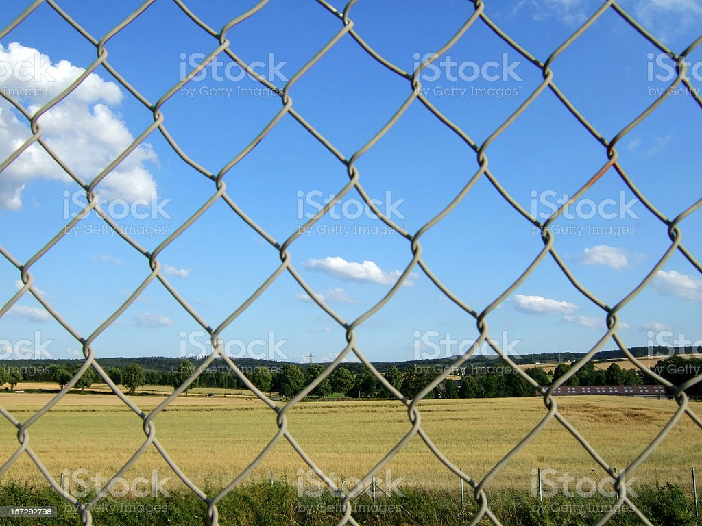 behind the mesh... royalty-free stock photo