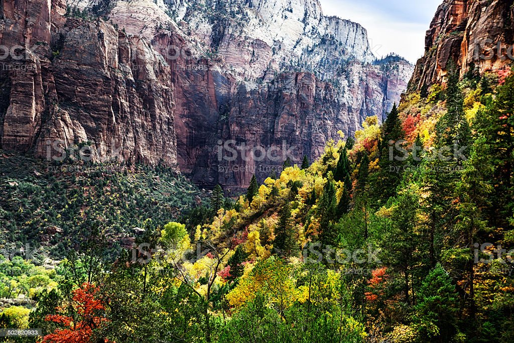 Behunin Canyon in Zion National Park, Utah royalty-free stock photo