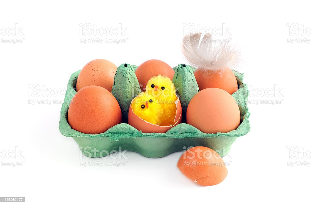 beige eggs with young chicken and feather in green carton stock photo