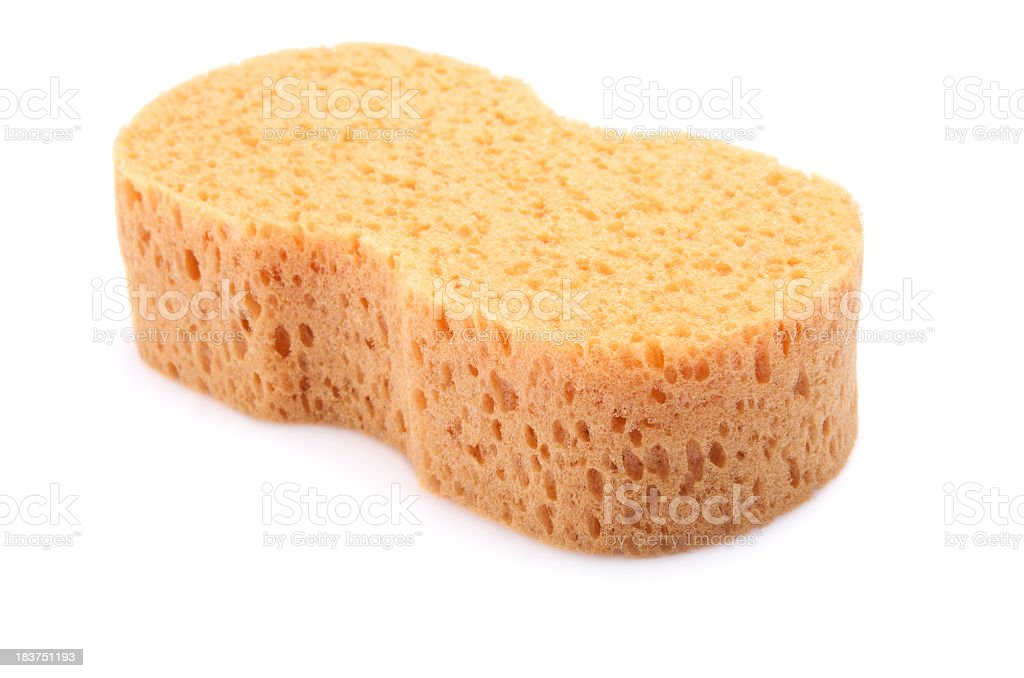 A beige sponge with holes in on a white background stock photo
