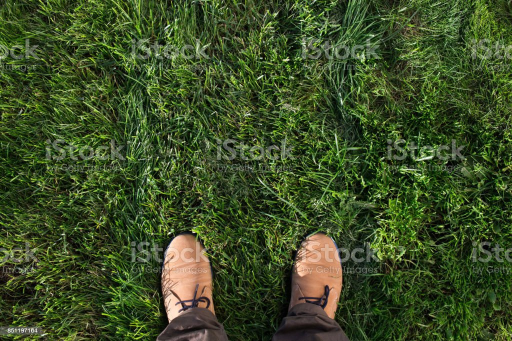 Beige suede boots on a green grass. Top view, flat lay stock photo