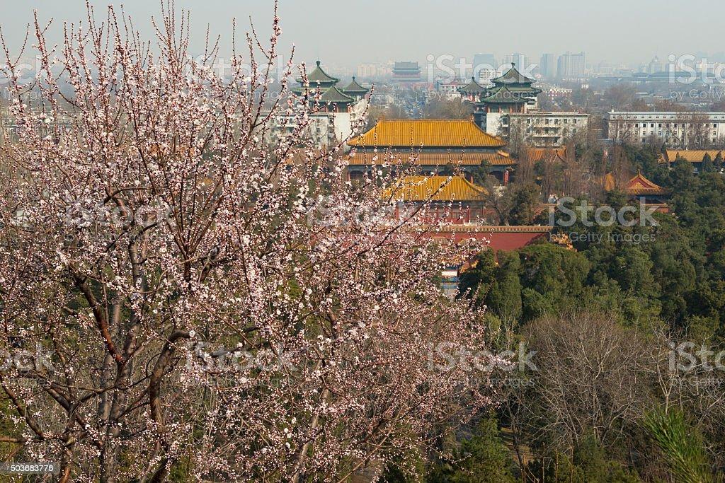 Beijing in spring stock photo