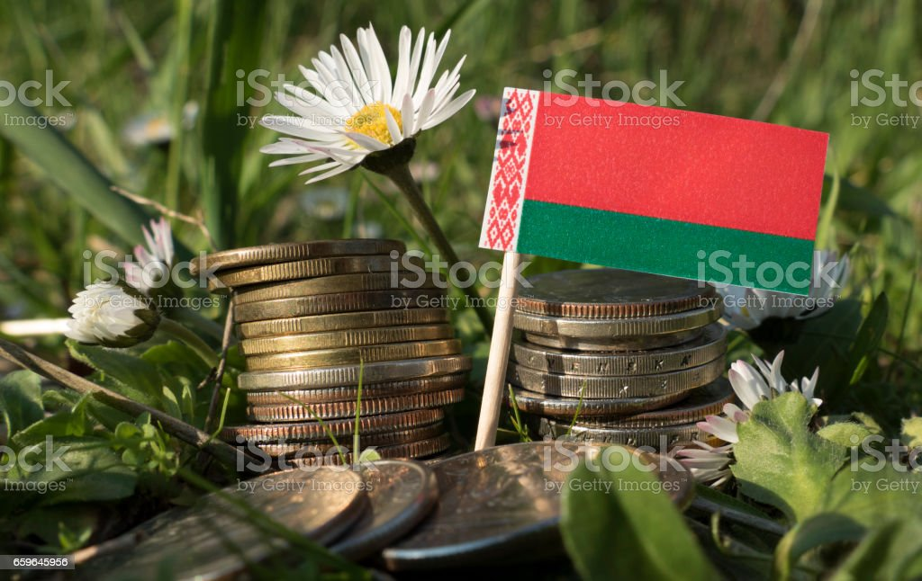 Belarus flag with stack of money coins with grass and flowers stock photo