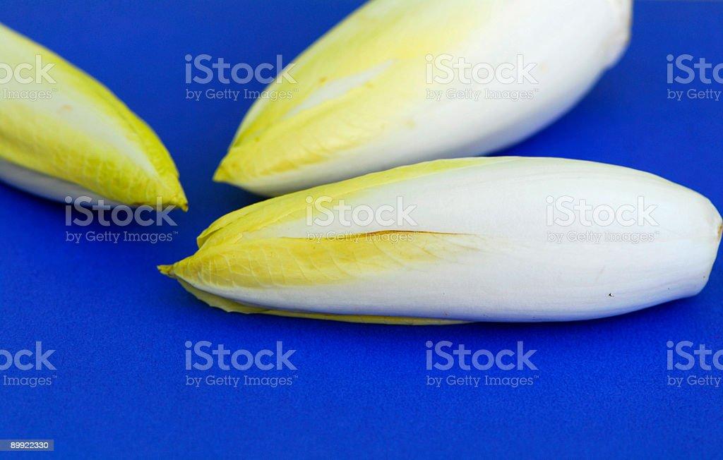 Belgian chicory stock photo