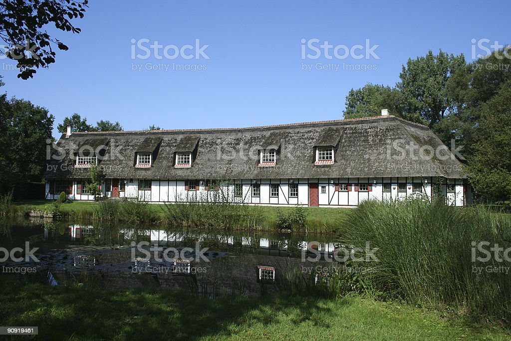 Belgian farm stock photo