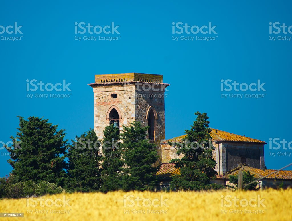 bell tower in a wheat field stock photo