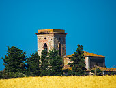 bell tower in a wheat field