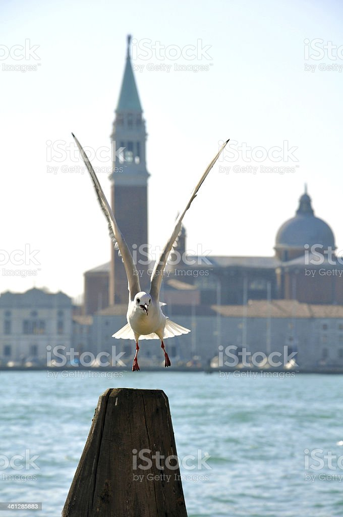 bell tower of the Saint Giorgio Maggiore royalty-free stock photo