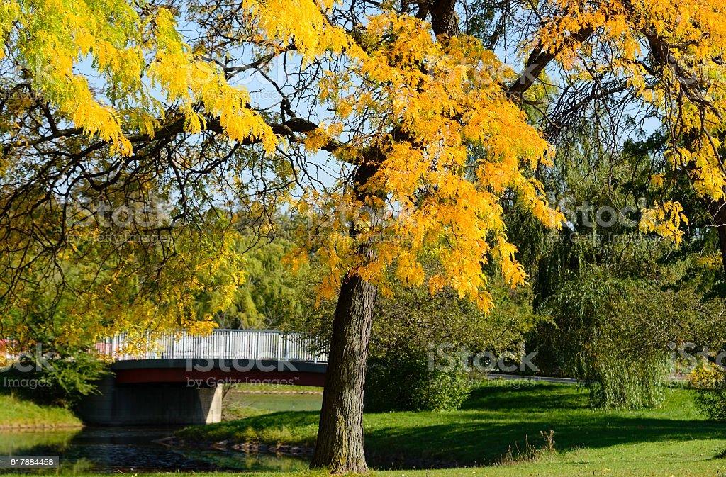 Belle Isle Detroit City Park stock photo