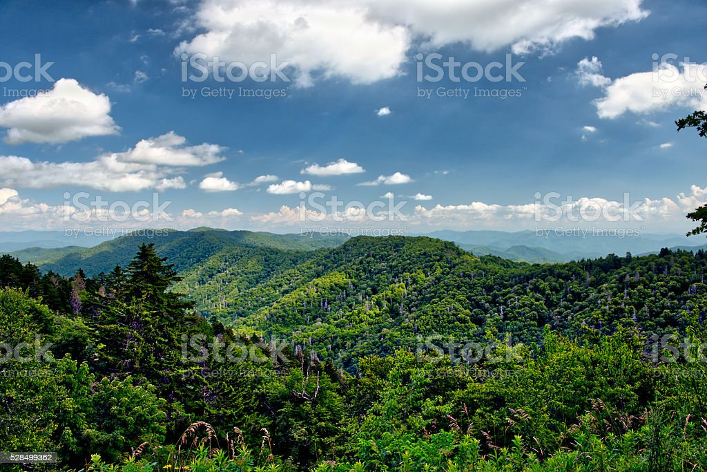 Below Clingman's Dome in Newfound Gap Area of Smoky Mountains stock photo