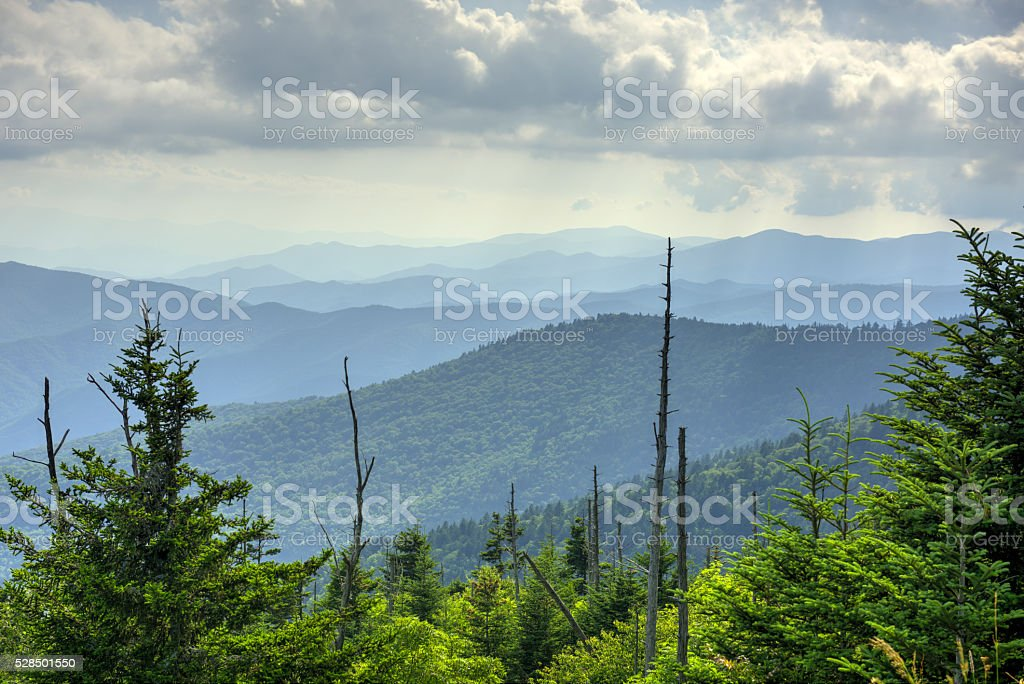 Below Clingman€™s Dome in Newfound Gap Area of Smoky Mountains stock photo
