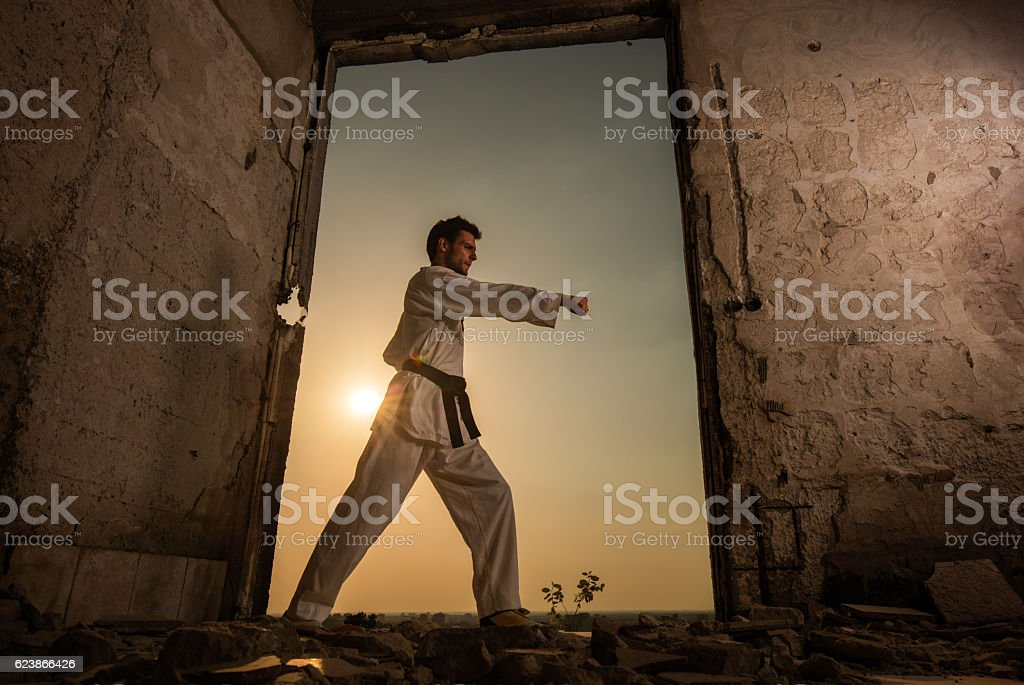 Below view of male karate fighter exercising at sunset. stock photo