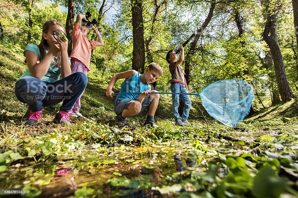 Below view of small explorers in the park. stock photo