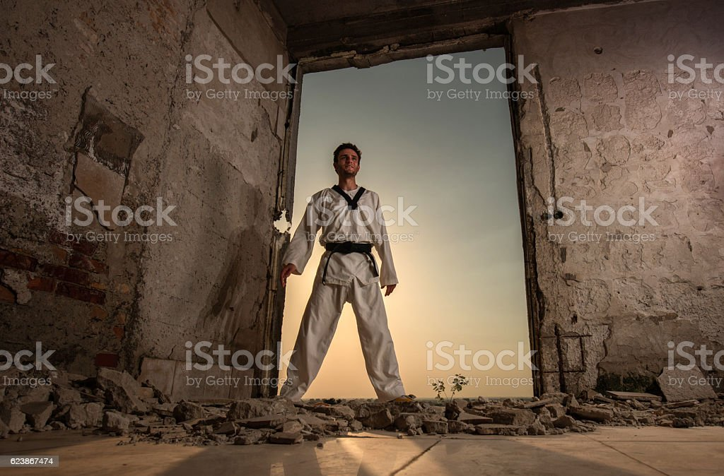 Below view of smiling black belt martial artist . stock photo