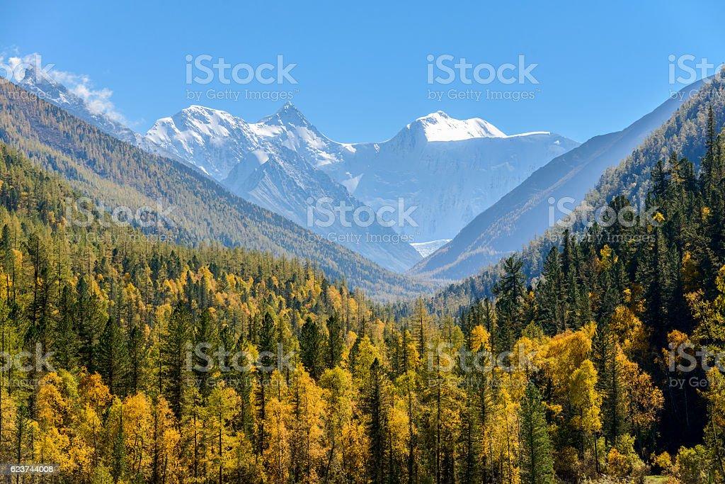 Belukha Mountain in autumn stock photo