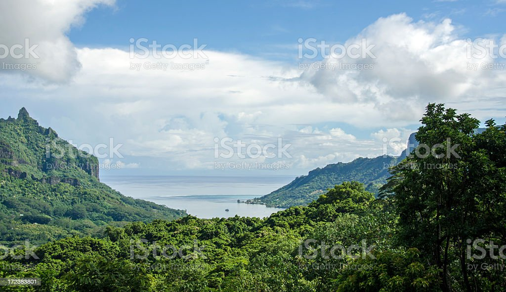 Belvedere Lookout on the Island of Moorea stock photo