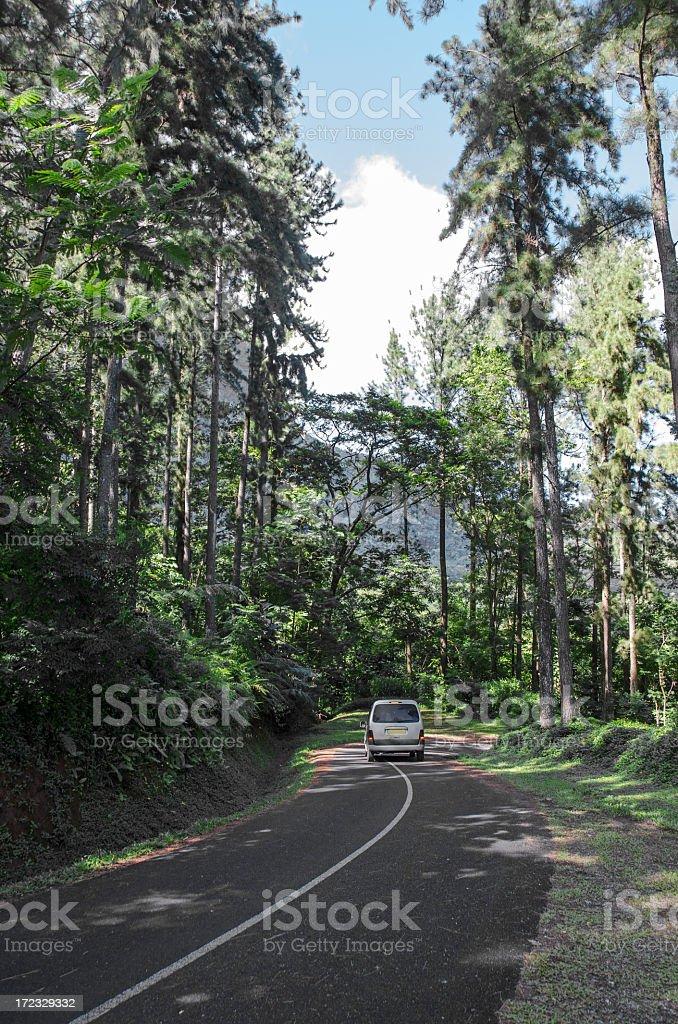 Belvedere Lookout Road stock photo