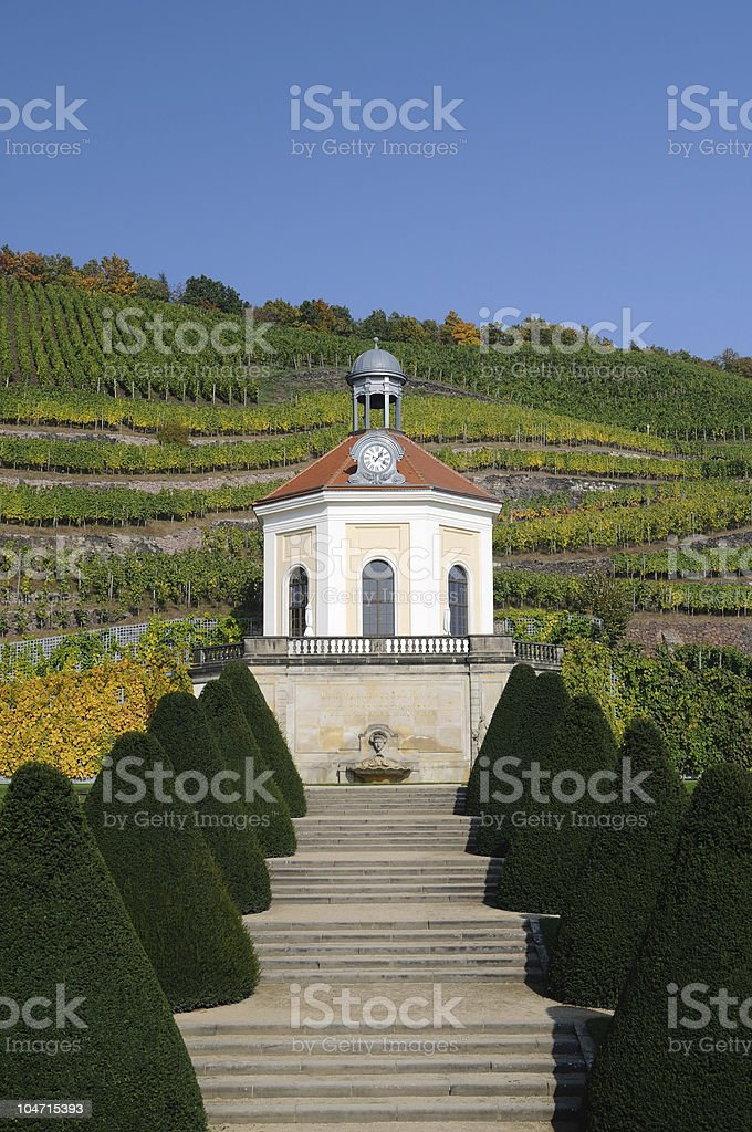 Belvedere of Vineyards in Fall stock photo