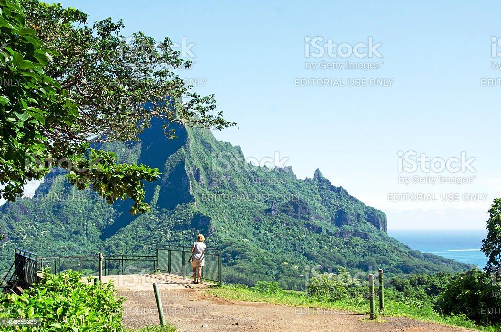 Belvedere Scenic View ... Moorea stock photo