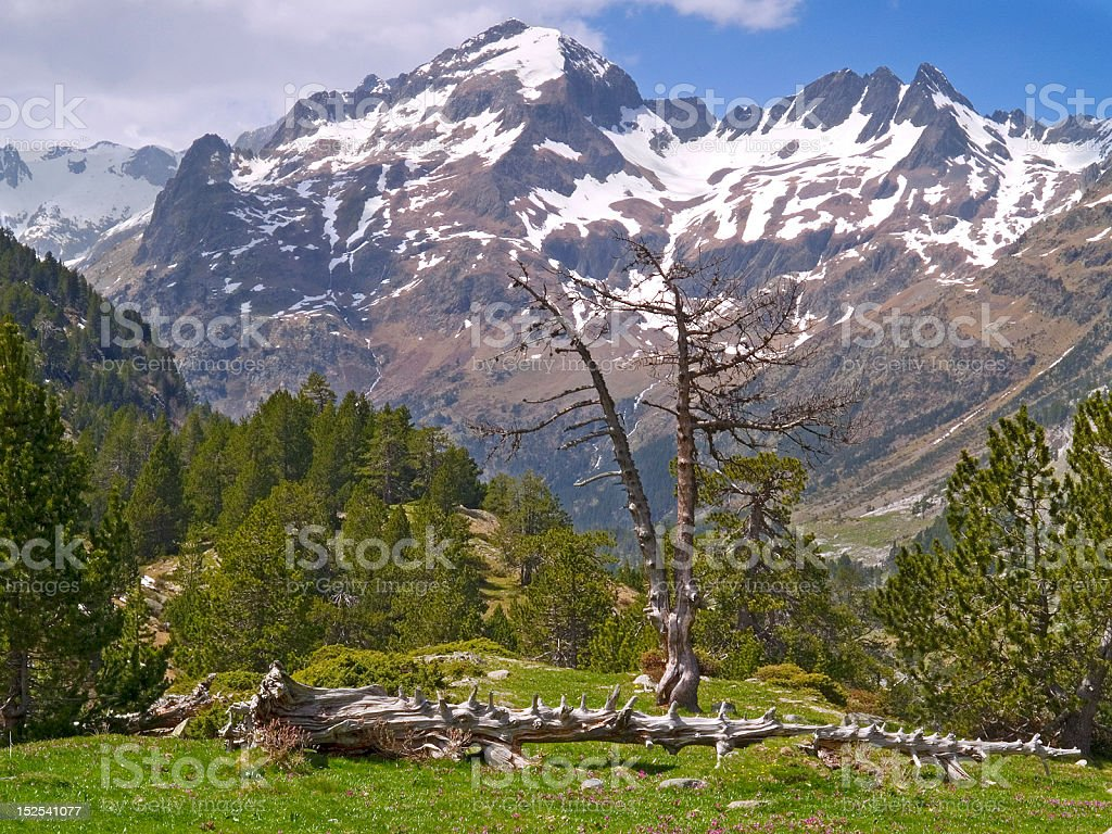 Benasque's Valley stock photo