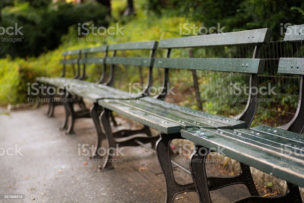 Bench at Central Park of Manhattan in New York City stock photo