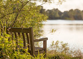 Bench at Sunset by a Lake
