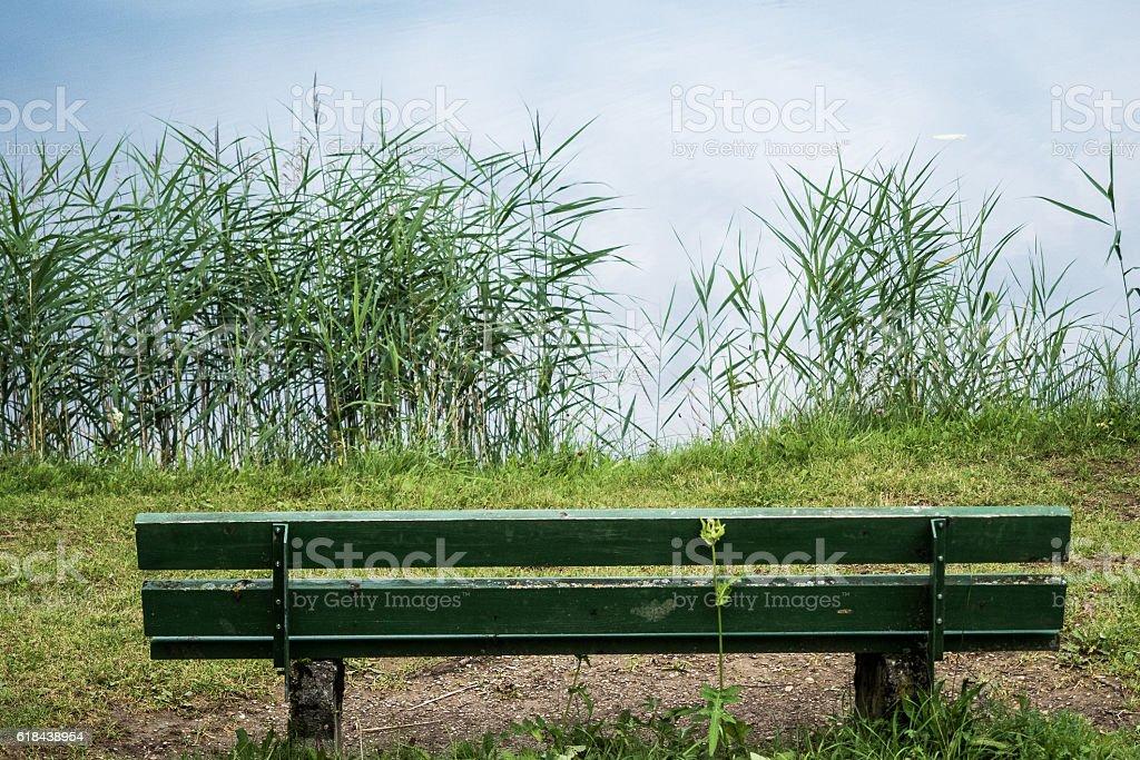 Bench at the lake stock photo
