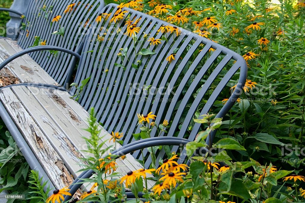 Bench Covered in Flowers royalty-free stock photo
