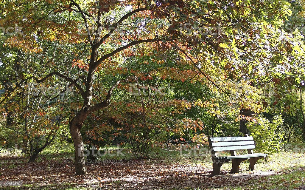 Bench Heaven 3 stock photo