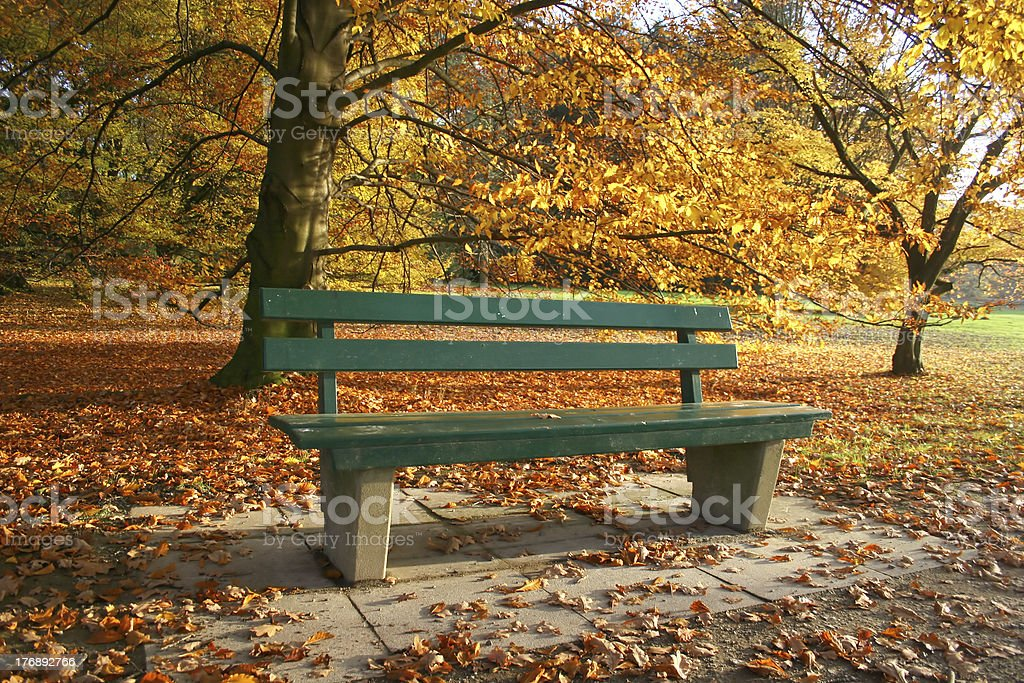 Bench in a autumnal park royalty-free stock photo