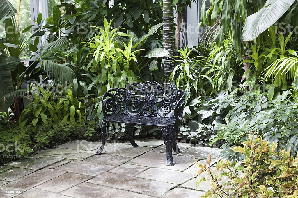Bench in a greenhouse, Allan Gardens, Toronto, Ontario, Canada stock photo