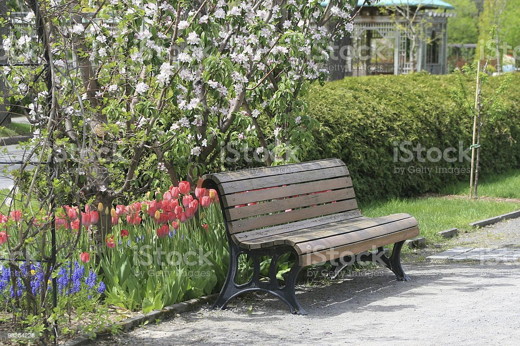 Bench in a park at spring royalty-free stock photo