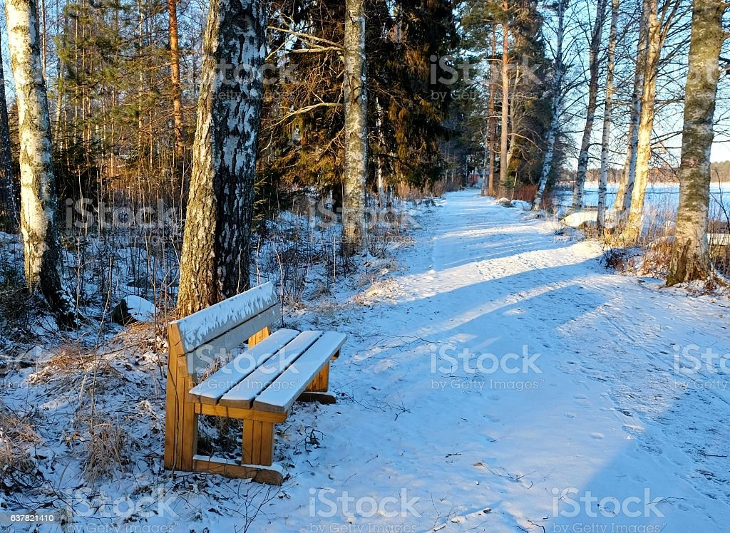 Bench in snow. stock photo