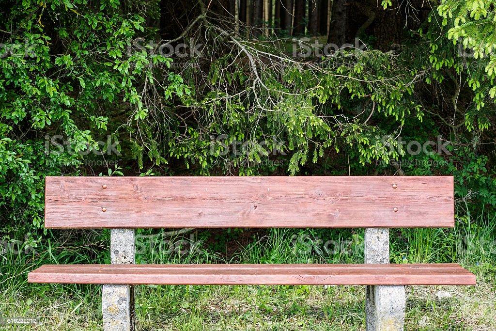 Bench in spring stock photo