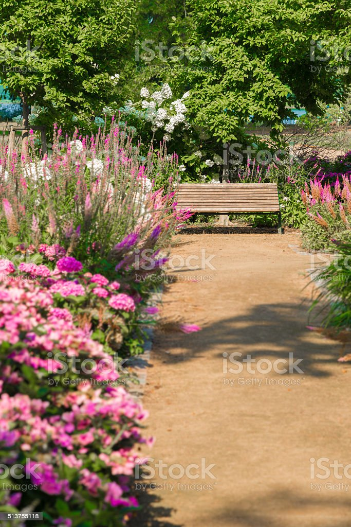 Bench in summer with blooming plants and way stock photo
