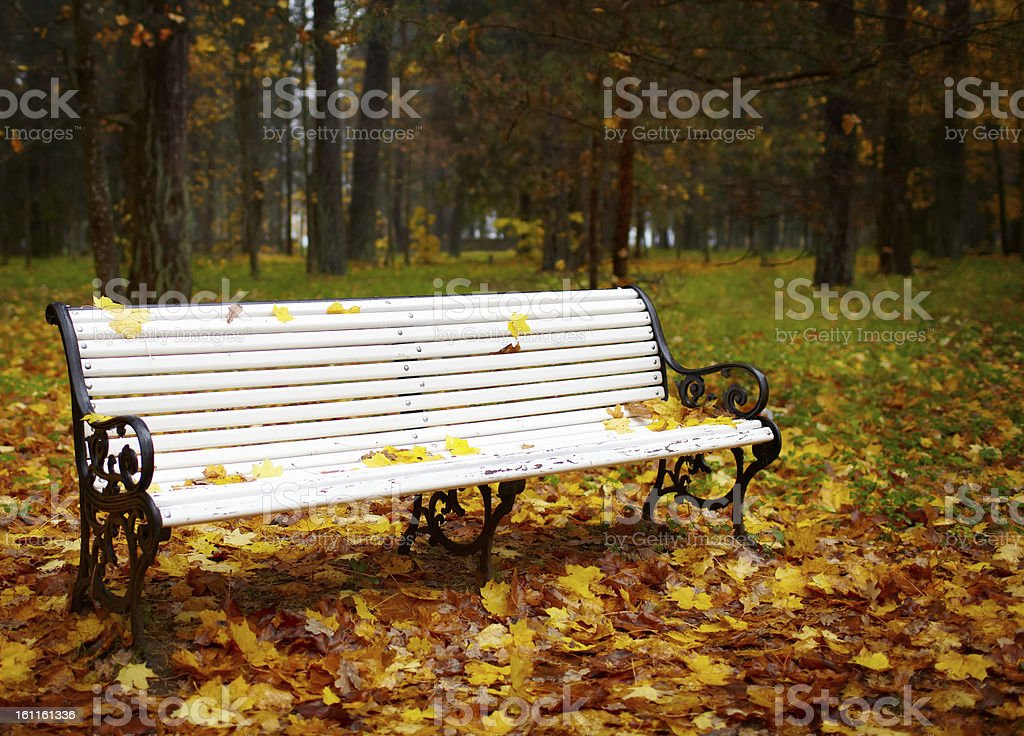 Bench in the autumn park. royalty-free stock photo