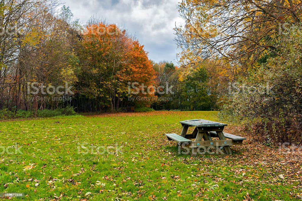 Bench in the autumn park royalty-free stock photo