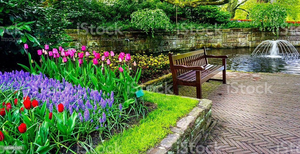Bench in the colorful spring garden, Keukenhof. Netherlands. stock photo
