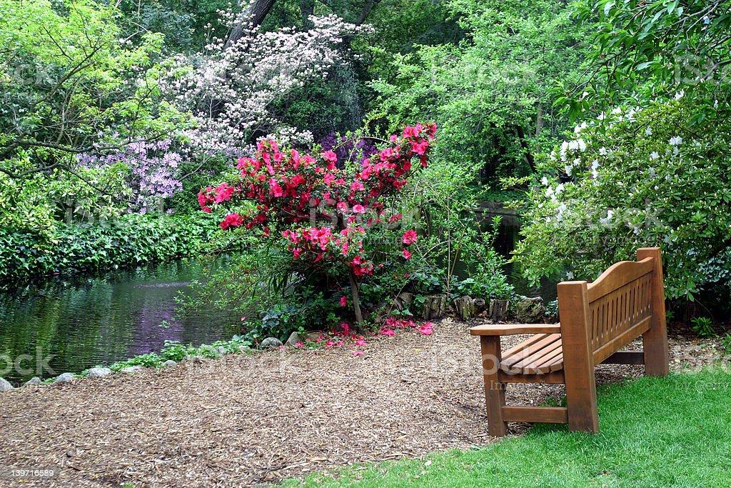Bench in the garden stock photo