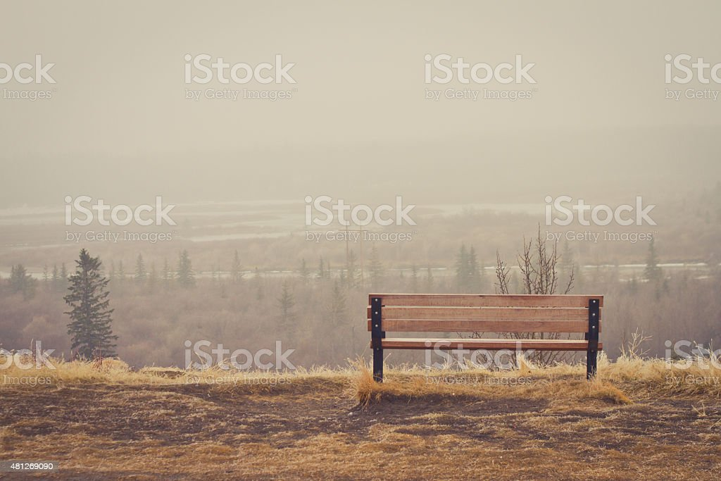 Bench in the Mist stock photo
