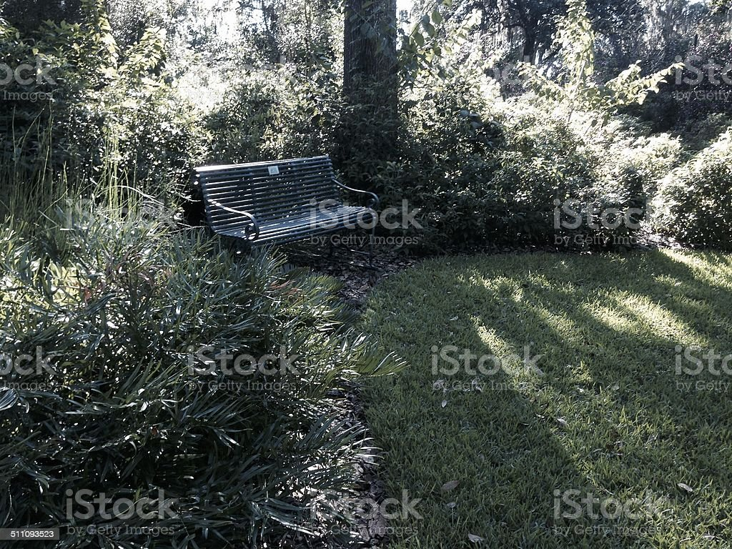Bench in the woods stock photo